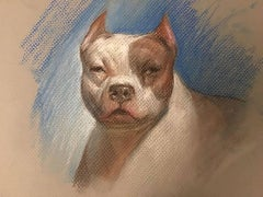 Bulldog, Drawing Study of a Brown and White American Bulldog, Matted and Framed
