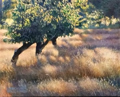 Sunrise - Field and Trees Basked in Bright Morning Light, Oil on Canvas Painting