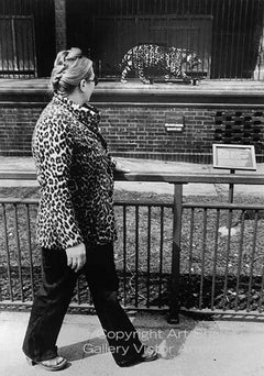 Two Leopards Spotted, Chicago 1974