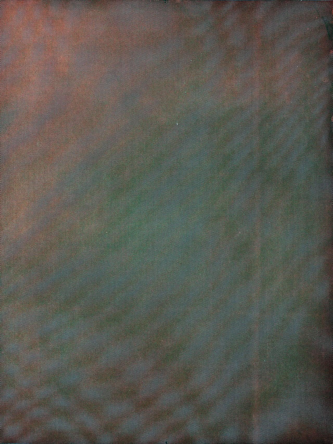 Mesh/Moire II, 2012, by Tauba Auerbach