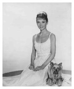 Audrey Hepburn with Her Dog Fine Art Print