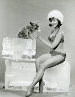 Yvonne Craig Vintage Original Photograph