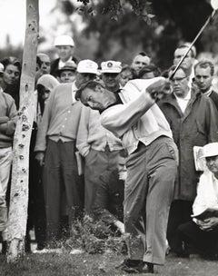 Arnold Palmer Taking a Swing Fine Art Print