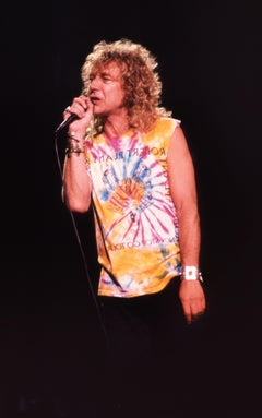 Robert Plant Performing in Tie DyeFine Art Print