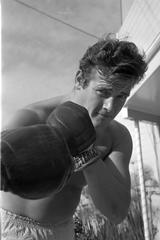 Roger Moore Boxing Fine Art Print