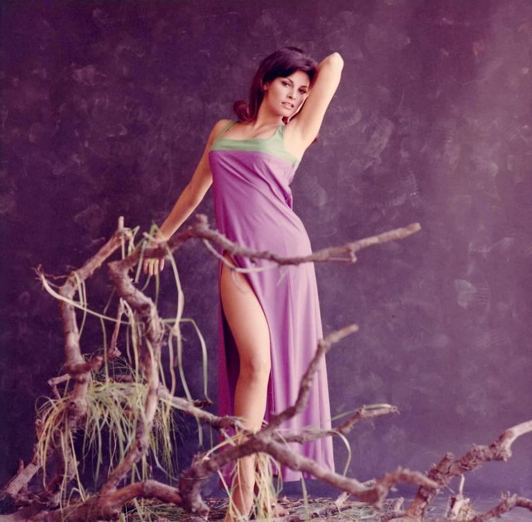 Ver Young Photos Of Raquel Welch