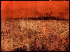 Marsh (diptych)