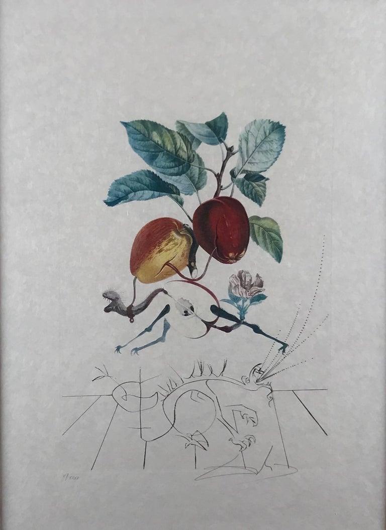 Pomme Dragon (Eve's Apple) - Art by Salvador Dalí