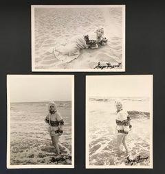 Marilyn Monroe Triptych