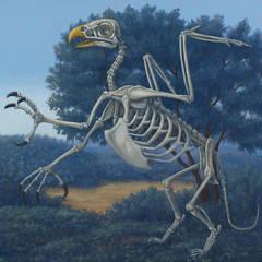 Gryphon Skeleton