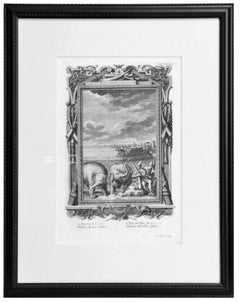 Copper Plate Engraving of a Pair of Elephants and Nautical Scene