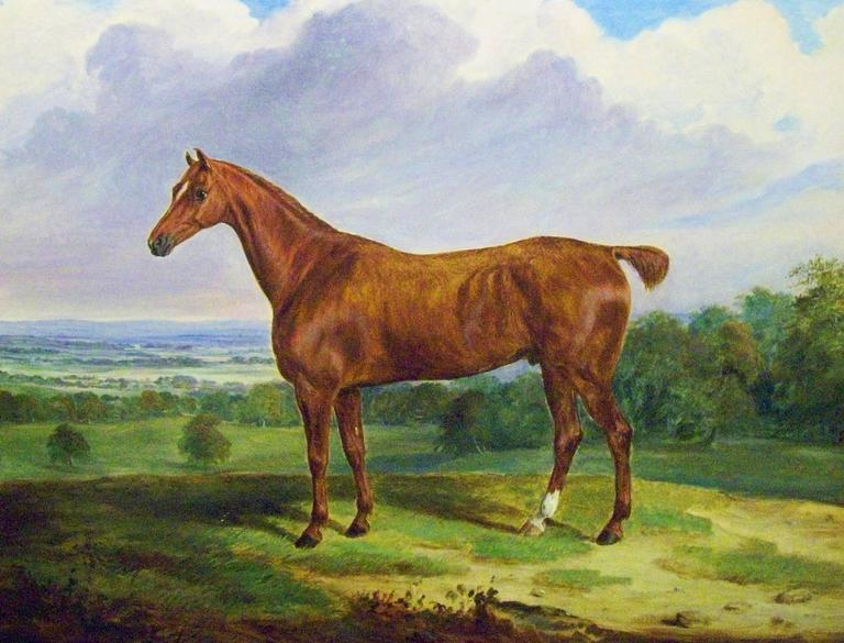 William Webb Animal Painting - A Chestnut Hunter in an Extensive Landscape