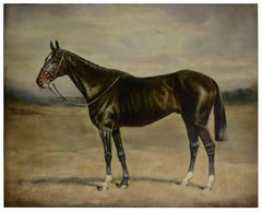 BLACK HORSE - Italian animalia oil on canvas painting by Alfredo Santini