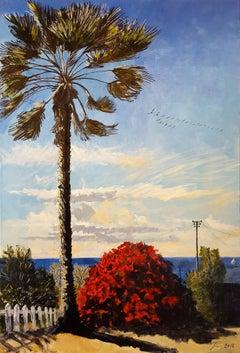 Crystal Cove Palm
