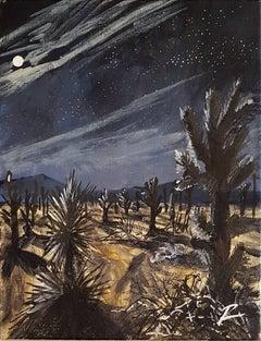 Joshua at Night