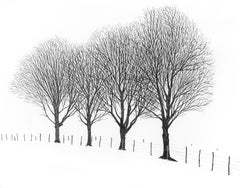 Deep Winter Trees