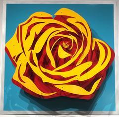Michael Kalish, Rose