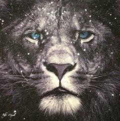 Kfir Moyal, Lion
