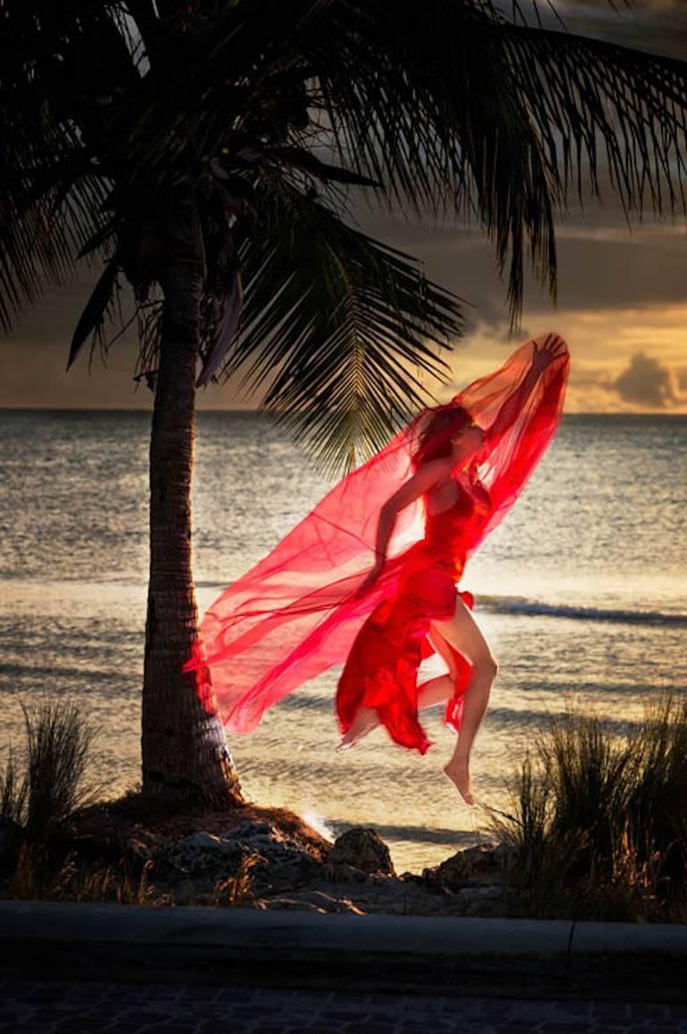 David Drebin, Red Angel