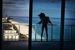 David Drebin, Recap