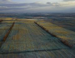 Dusky Fields, McKenzie County, North Dakota