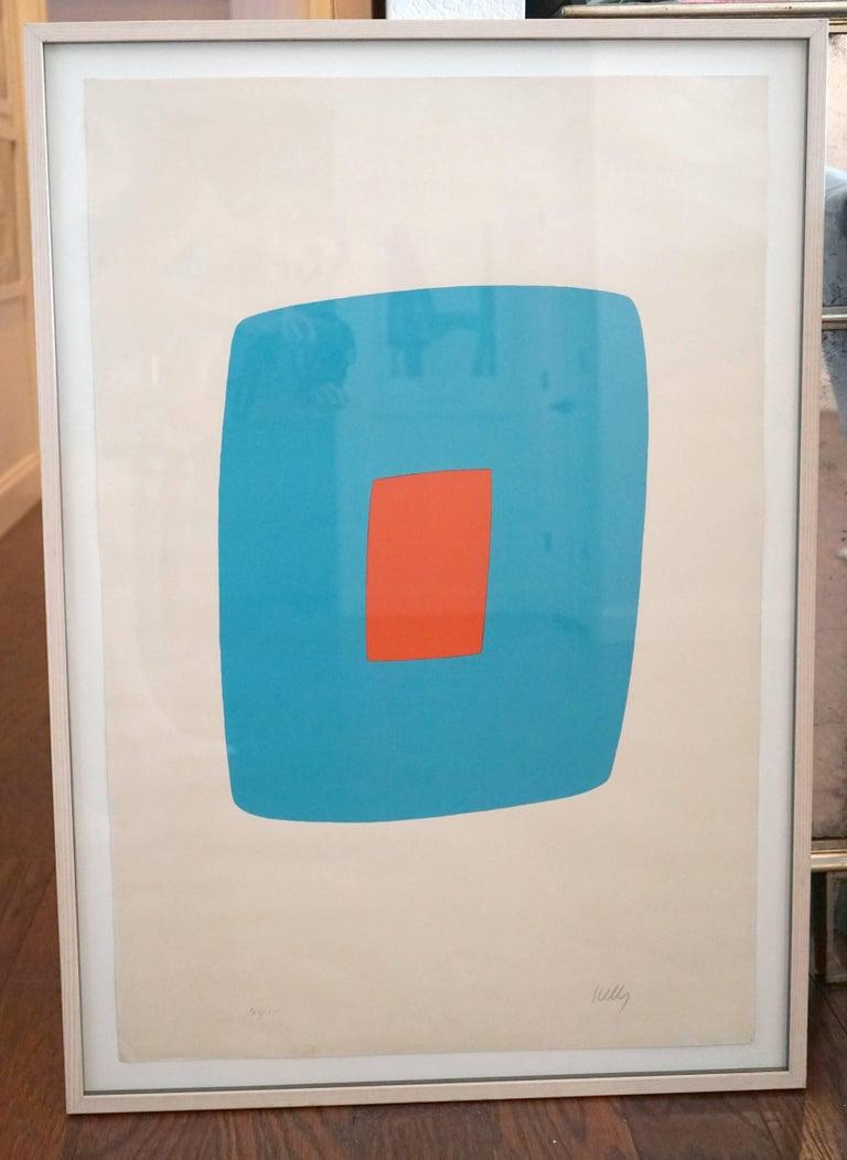 Light Blue With Orange VI.11 4