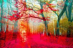 Thomas Bijen - Pink Forest - Limited Gold Edition of 149