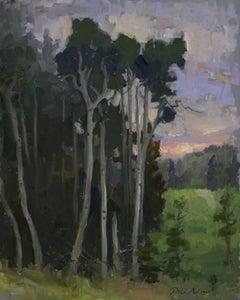 Aspens at Sunset; Trinchera Ranch