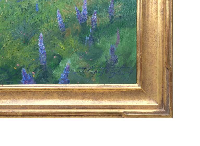 Purple Wonder; Irvine Land Preserve 4