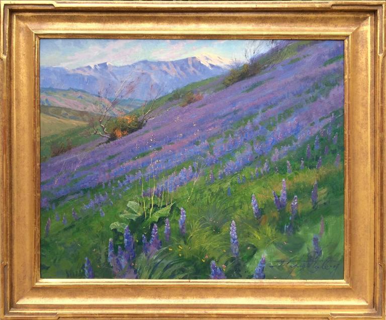 Purple Wonder; Irvine Land Preserve 2