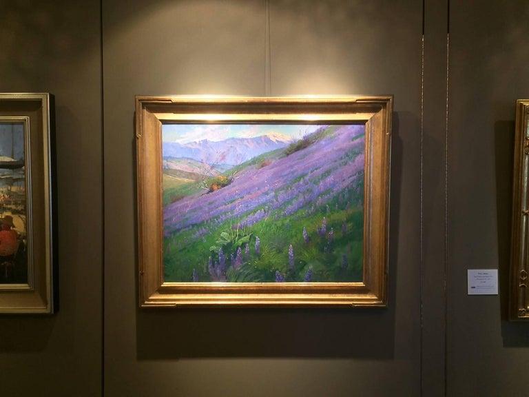 Purple Wonder; Irvine Land Preserve 7