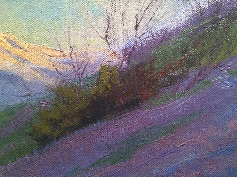 Purple Wonder; Irvine Land Preserve 6