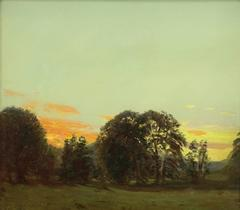 Summer Evening with Sunset over a Forest