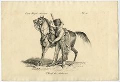 Cheval des Ardennes.