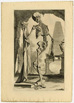 Untitled - Plate 88: This decorative anatomy plate shows a human skeleton.