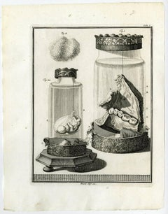 Tab. I.' - Fig. 1: a jar in which part of a lower jaw with cheek tissue [...].