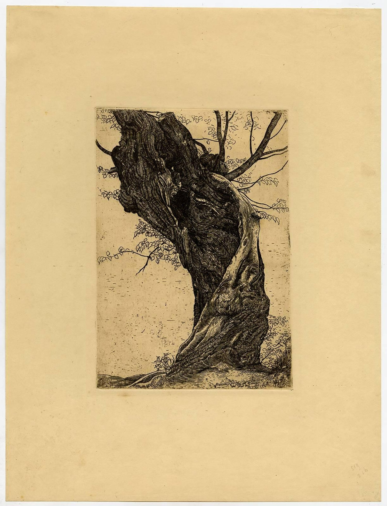 Pieter Dupont - Untitled - Large willow tree., Print For Sale at 1stdibs
