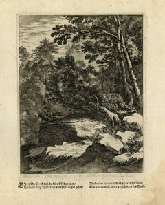 Untitled - Wooded landscape with rocks.