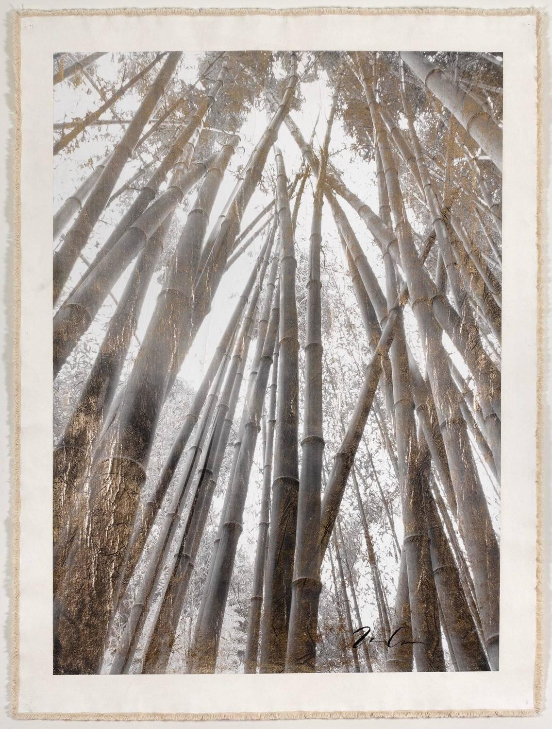 bill claps bamboo forest canopy painting for sale at 1stdibs - Bamboo Canopy 2015