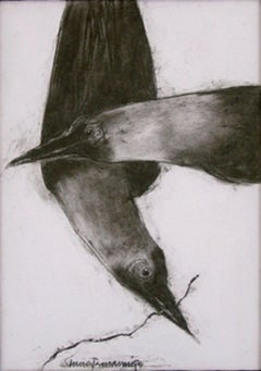 """Crow, Animal Drawing, Conte on paper, Black, White By Modern Artist """"In Stock"""""""