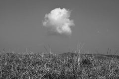"Landscape Scene, Black and White Photography by Indian Artist ""In Stock"""