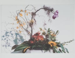 """Feng Shui Floral,"" a Photograph signed by David Barnett"