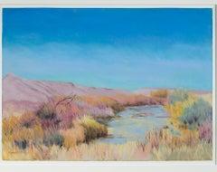 """Bosque del Apache, NM,"" a Pastel signed by Peggy Leonard"