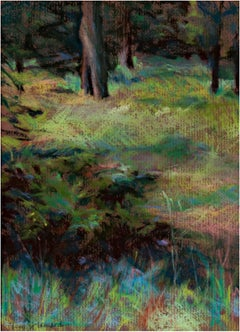"""""""Bandelier #1,"""" a Pastel signed by Peggy Leonard"""