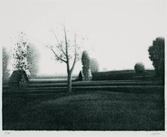 """Landscape"" Lithograph signed by Robert Kipniss"