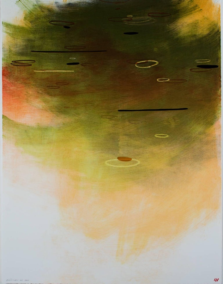 """Light on Water"" is an original 13 color lithograph with pochoir from 4 aluminum plates and 1 mylar stencil. It was created by the artist Emmi Whitehorse and is signed on the back. It is from an edition of 120 and includes abstract lines and fields"