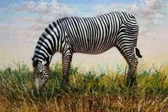 """Grévy's Zebra,"" Oil on Canvas signed by Lucre Chura"