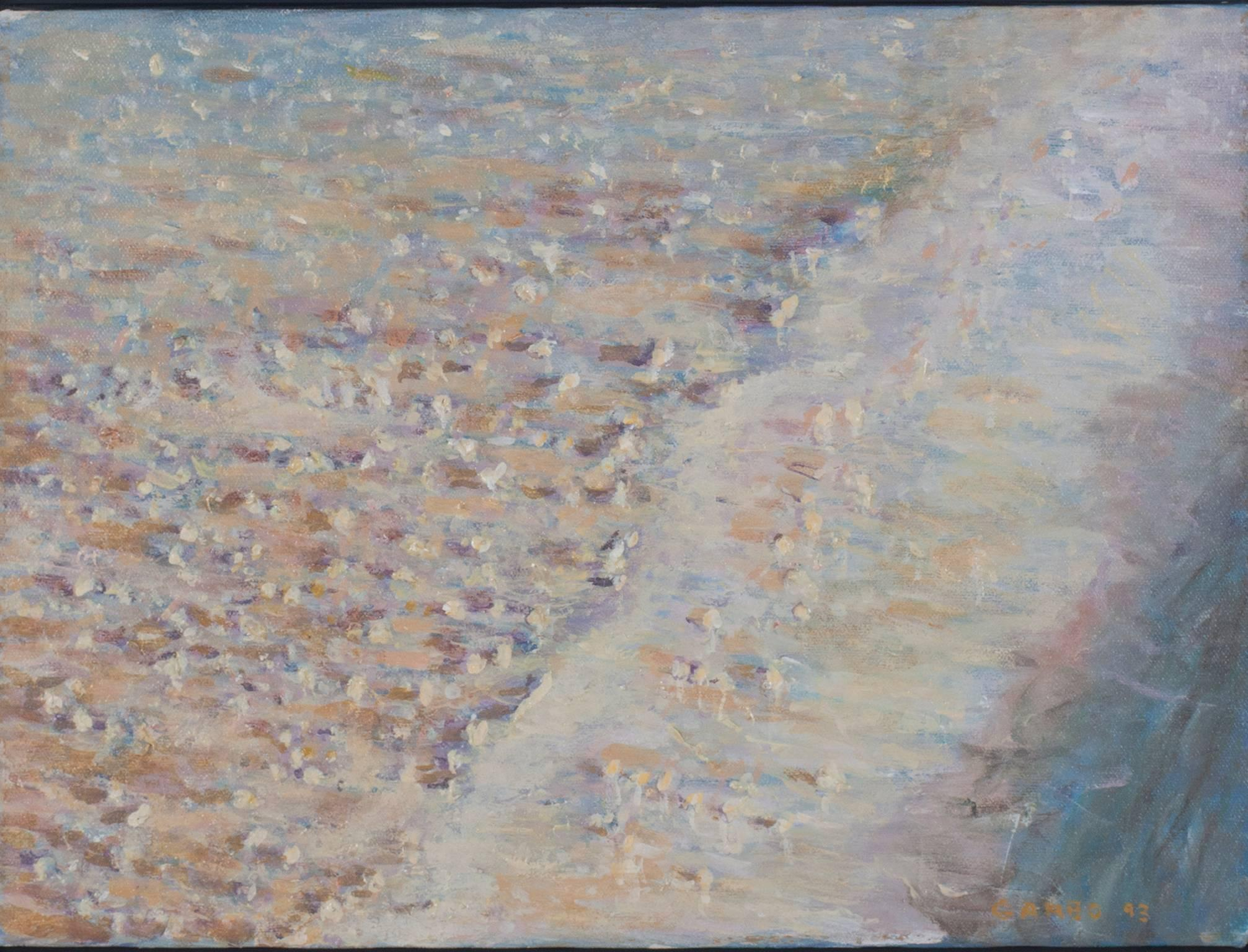 """Sunset Effect Sea Shells -Marco Island,"" Acrylic signed by Chuck Garbo Hajinian"
