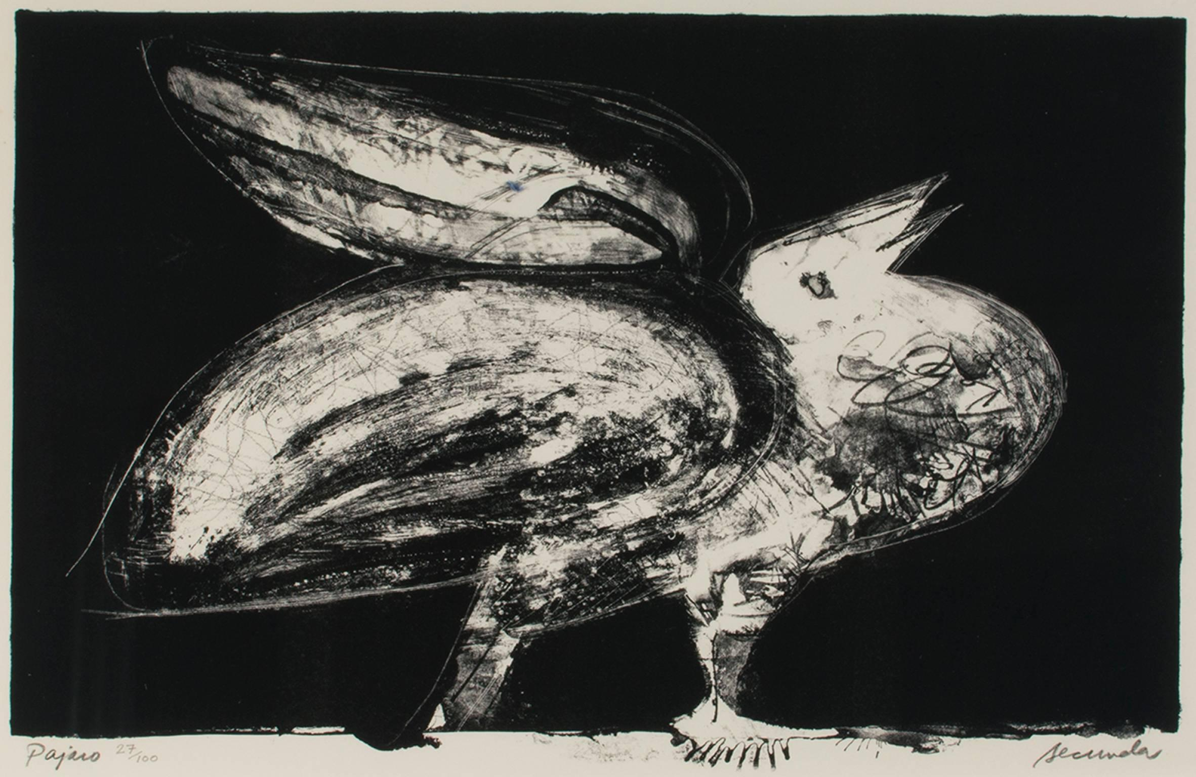 """""""Pajaro (Parrot),"""" Black and White Lithograph signed by Arthur Secunda"""