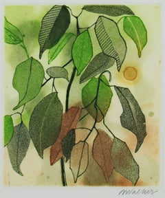"""Plant Leaves,"" Color Etching and Aquatint signed by Anne Walker"